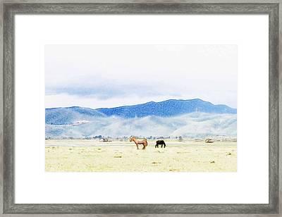Horses In Vast Grassland  Framed Print by Lanjee Chee