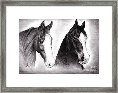 Horses Framed Print