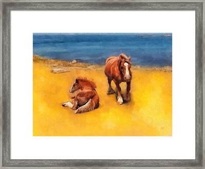 Horses On The Coast Of Brittany Framed Print by Menega Sabidussi