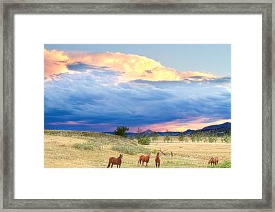 Horses On The Storm 2 Framed Print by James BO  Insogna