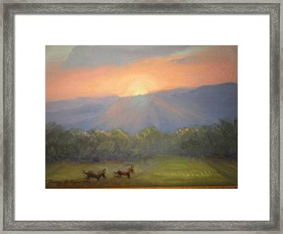 Horses Running Free Framed Print by Patricia Kimsey Bollinger