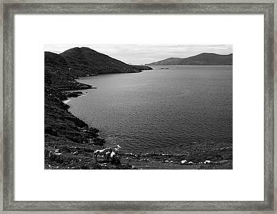Horseshoe Coast Framed Print