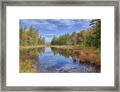 Horseshoe Lake Hdr 01 Framed Print