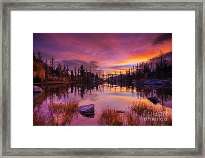 Horseshoe Lake Sunrise Reflection Framed Print by Mike Reid
