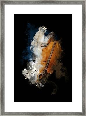 Horsing Around Framed Print by Davina Washington