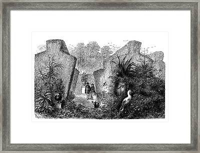 Horticultural Gardens Framed Print by Science Photo Library