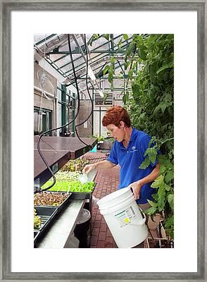 Hospital Organic Farm Framed Print by Jim West