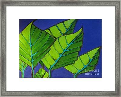 Hosta Blue Tip One Framed Print