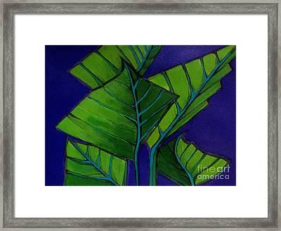 Hosta Blue Tip Two Framed Print