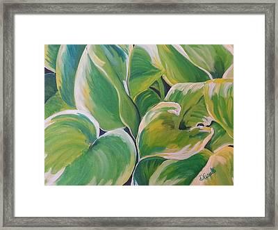 Hosta Garden Framed Print