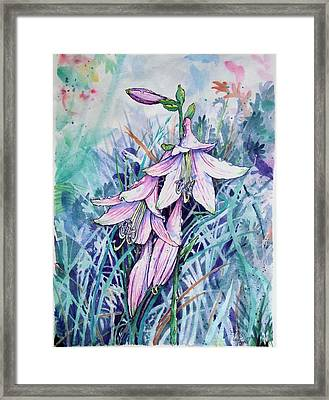 Hosta's In Bloom Framed Print