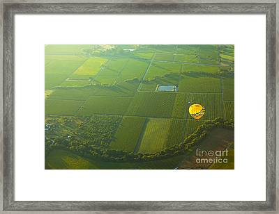 Hot Air Balloon Over Napa Valley California Framed Print by Diane Diederich