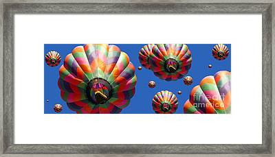 Hot Air Balloon Panoramic Framed Print