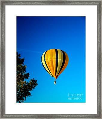 Hot Air Balloon Framed Print by Robert Bales