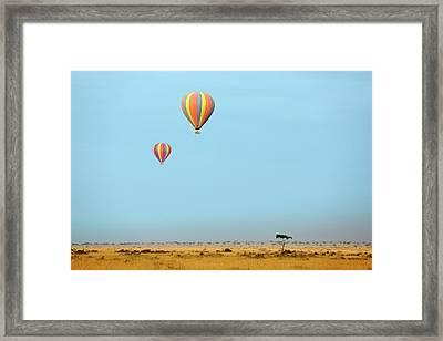 Hot Air Balloons Over Masai Mara Framed Print by Bildagentur-online/mcphoto-schulz