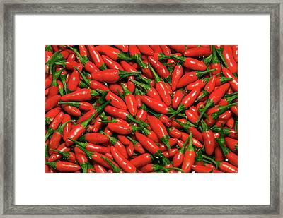 Hot Chili Peppers (capsicum L Framed Print