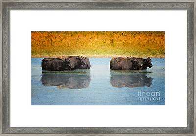 Hot Day Framed Print by Betty LaRue