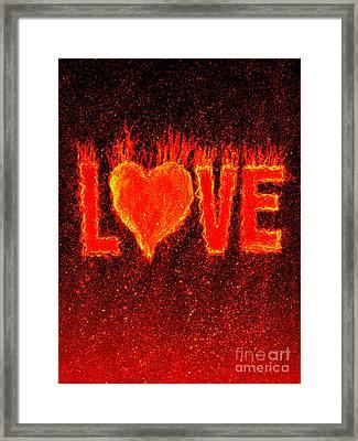 Hot Love  Framed Print by Bill Holkham