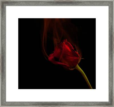 Hot Love Framed Print by Max Ratchkauskas