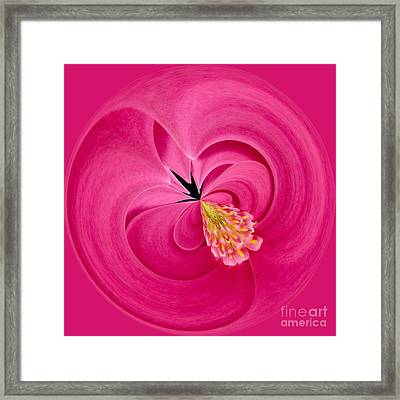 Hot Pink And Round Framed Print by Anne Gilbert