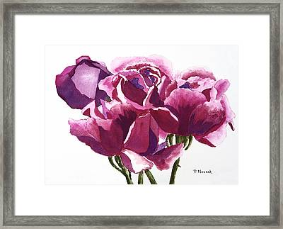 Hot Pink Roses Framed Print by Patricia Novack