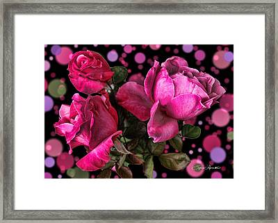 Hot Pink Trio Framed Print by Sylvia Thornton