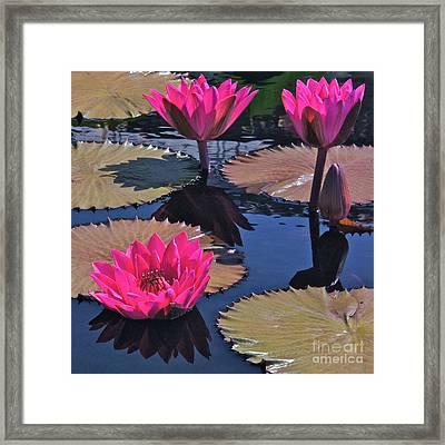 Hot Pink Tropicals Framed Print