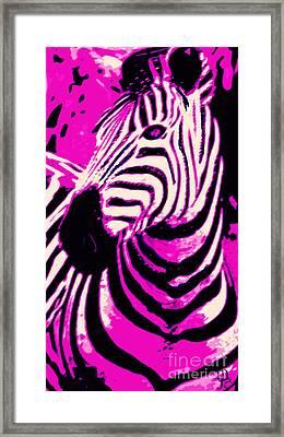 Hot Pink Zebra  Framed Print by Mindy Bench