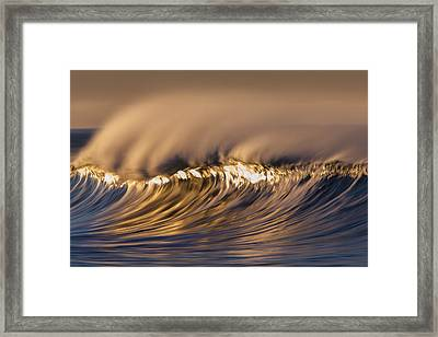 Hot Reflection  73a0486 Framed Print