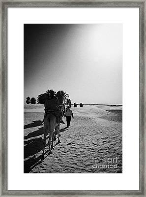 hot sun beating down on tourists taking a camel ride into the sahara desert at Douz Tunisia Framed Print by Joe Fox