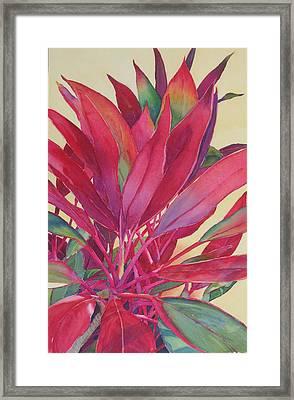 Hot Ti Framed Print by Judy Mercer