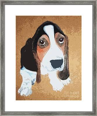 Hound Dog Framed Print by Rachel Barrett