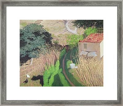 House And Reeds Framed Print by Felix Edouard Vallotton