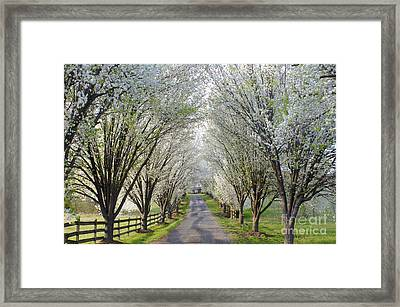House At The End Of Pear Tree Lane Framed Print by Benanne Stiens