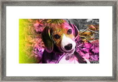 House Broken Beagle Puppy Framed Print