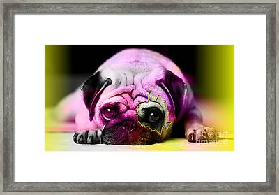 House Broken Pug Puppy Framed Print