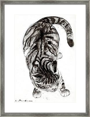House Cat Framed Print by Kurt Tessmann