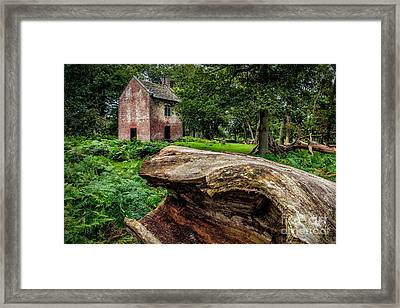 House In The Woods Framed Print