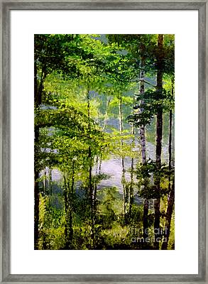 Wisconsin Birch Trees On Lake  Framed Print by Lisa Alex Gray
