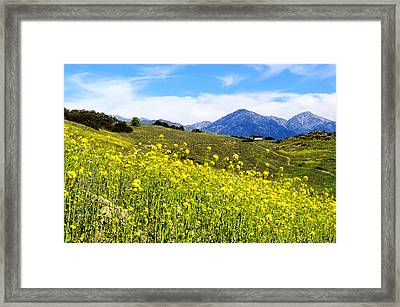 House On The Hill Framed Print by Camille Lopez