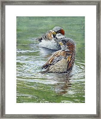 House Sparrows  Framed Print by Ken Everett