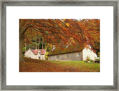 Houses With Trees In Autumn Colours Framed Print