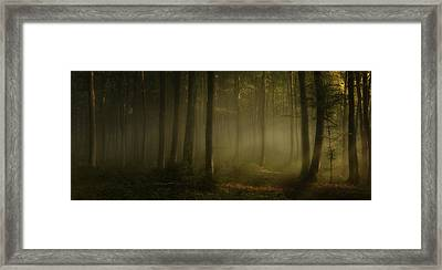 How Can Words Express The Feel Of Sunlight In The Morning Framed Print by Norbert Maier