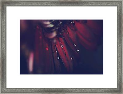 How Deep Is Your Love Framed Print by Laurie Search