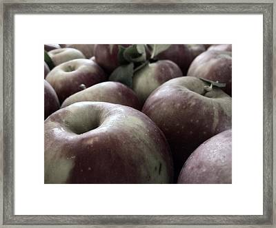 Framed Print featuring the photograph How Do You Like Them Apples by Photographic Arts And Design Studio