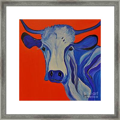 How Now Blue Cow Framed Print