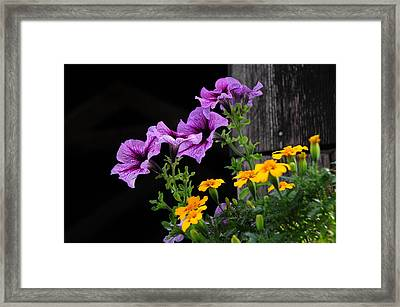 Howe Covered Bridge Beauty Framed Print by Mike Martin