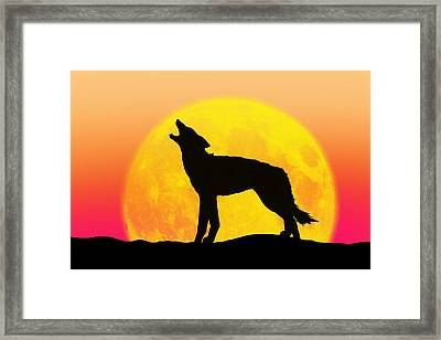 Howl Framed Print by Peter Stevenson