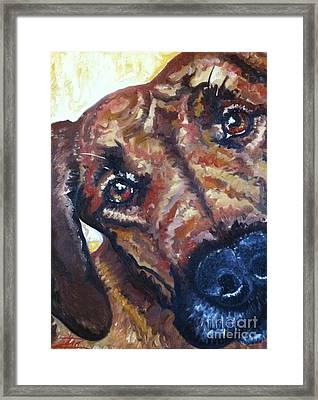 Howler Two Framed Print