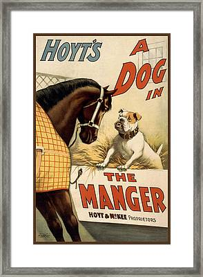 Hoyts A Dog In The Manger Framed Print